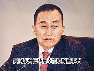 吴向东升任华夏幸福联席董事长
